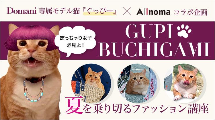 Domani専属モデル猫『ぐっぴー』